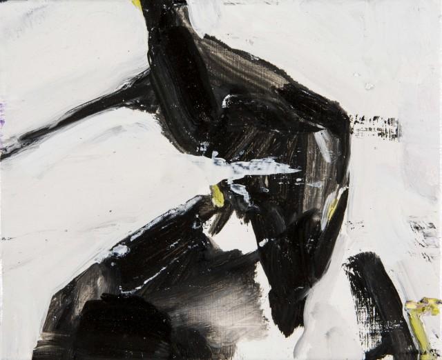 Paolo-Maggis-2015-Magpie-23x27cm